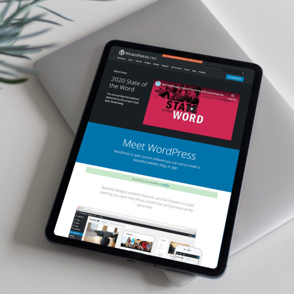 wordpress-beginners